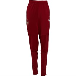 Puma Junior AFC Arsenal Stadium Red Dahlia