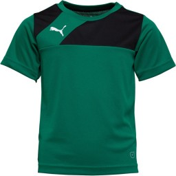 Puma Junior Esquadra Jersey Green/Black