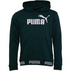 Puma Amplified Hoodie Pine Green
