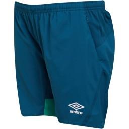 Umbro Junior SVWB Werder Brenman Legion Blue/Golf Green